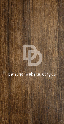 Portfolio_DD_bizz_card2